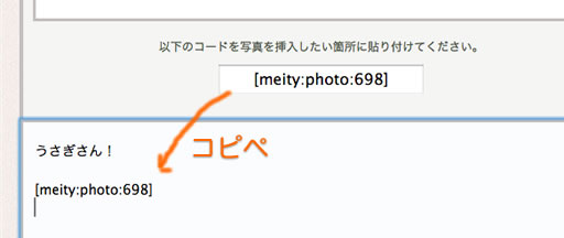 meityphotoupload04.jpg