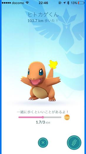 pokemon-go-hitokage-100km-03.jpg